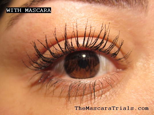 The Mascara Trials L Oreal Paris Voluminous Million Lashes Diamonds Review